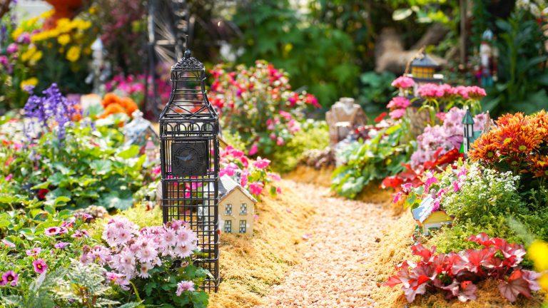 idee deco jardin