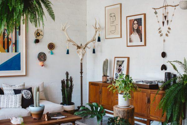 Plantes pour appartement : apprenez à faire entrer la nature dans votre intérieur
