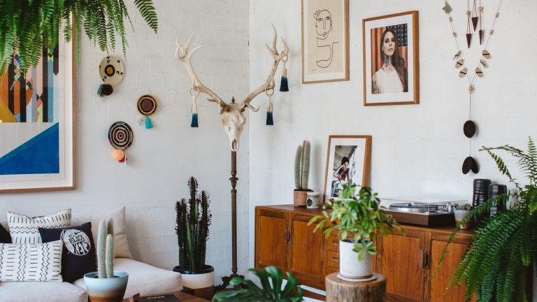 plantes pour-appartement