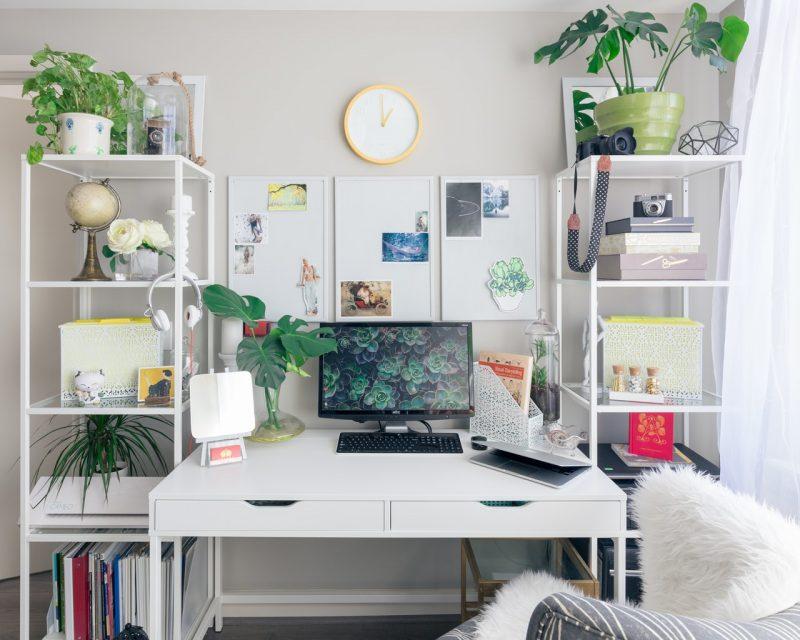 productivité plante
